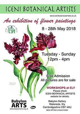 Iceni Botanical Artists : An Exhibition of Flower Paintings