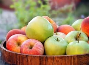 Free Event! Ely's Apple Festival 2019