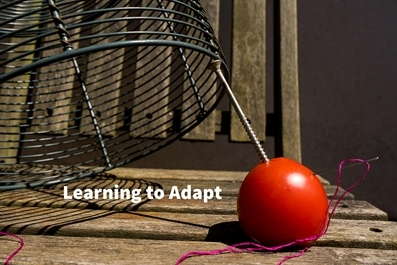 Learning to adapt - an Interactive Workshop on documenting your life